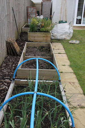 Looking along the raised beds with herb bed replanted