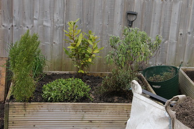 Herb bed re-filled and planted