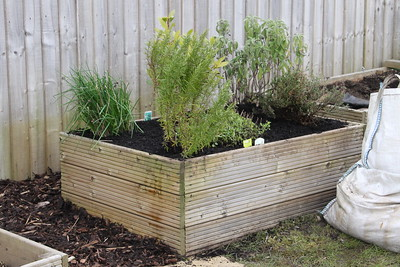 Herb bed re-planted and top dressed